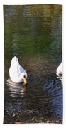 Swan Ripplle  Beach Towel