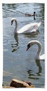 Swans And Ducks Beach Towel