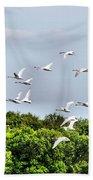 Swans In Flight Beach Towel