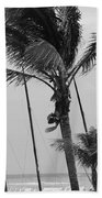 Sway Beach Towel