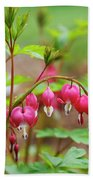 Sweet Bleeding Heart Beach Towel