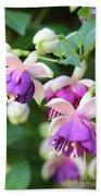 Sweet Fuchsia Flowers Beach Towel