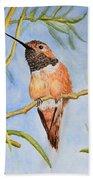 Sweet Hummingbird Beach Towel