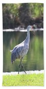 Sweet Sandhill By The Pond Beach Towel