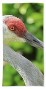 Sweet Sandhill Profile Beach Towel