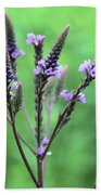 Sweet Vervain Beach Towel