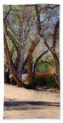 Sweetwater 6 Beach Towel