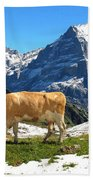 Swiss Scene Beach Towel