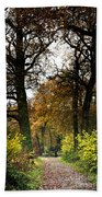 Swithland Woods, Leicestershire Beach Towel