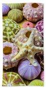 Syarfish And Sea Urchins Beach Towel