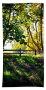 Sycamore Grove Series 12 Beach Towel