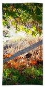 Sycamore Grove Series 8 Beach Towel