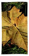 Sycamore Leaf Beach Towel