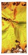 Sycamore Leaf  In Fall Beach Towel