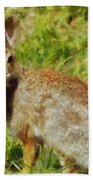Symbol Of The Rabbit Beach Towel