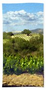 Syrah For Miles Beach Towel
