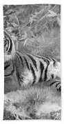 Takin It Easy Tiger Black And White Beach Towel