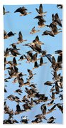 Taking Flight 2 Beach Towel