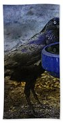 Taming Of The Crow Beach Towel