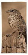 Tanager Finch Beach Towel
