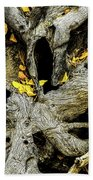 Tangled Roots Beach Towel
