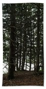 Tangled Trees Beach Towel