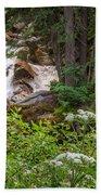 Tanner Flat Falls Beach Towel