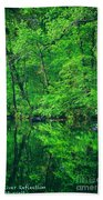 Tar River Reflection Beach Towel