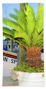 Tarpon                 Tarpon Palm                                     Beach Towel