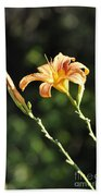 Tasmania Day Lily Beach Towel