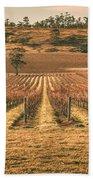 Tasmanian Winery In Winter Beach Towel