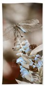 Tattered Wings B1 Beach Towel