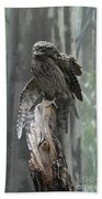 Tawny Frogmouth With It's Eyes Closed And Wing Extended Beach Towel