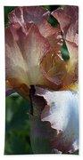 Tawny Iris Photograph Beach Towel