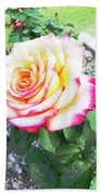 Tea Rose For A Lady Beach Towel