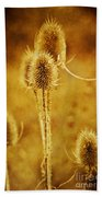 Teasel Group Beach Towel