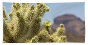 Teddy Bear Cholla Cactus With Flower Beach Towel