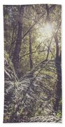 Temperate Rainforest Canopy Beach Towel