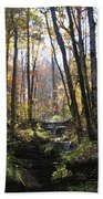 Tennessee Falls Beach Towel