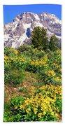 Teton Spring In The Valley Beach Towel