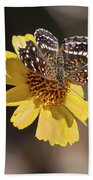 Texan Crescent Butterfly On Marigold-img_1348-2016 Beach Towel