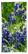 Texas Bluebonnets 002 Beach Towel