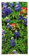 Texas Bluebonnets And Indian Paintbrush Beach Towel