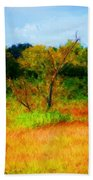 Texas Landscape 102310 Beach Towel