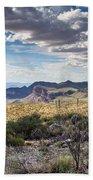 Texas Landscapes #3 Beach Sheet