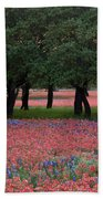 Texas Live Oaks Surrounded By A Field Of Indian Paintbrush And Bluebonnets Beach Towel