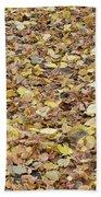 Texture104 Beach Towel
