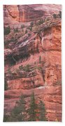 Textures Of Zion Beach Towel