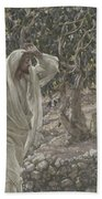 The Accursed Fig Tree Beach Towel by Tissot
