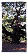 The Angel Oak In Charleston Sc Beach Towel